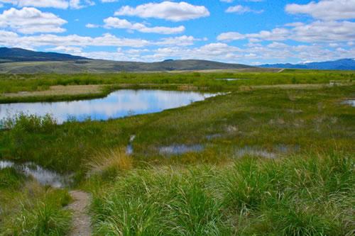Warm Springs Pond Wildlife Management Area