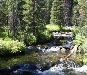 Twin Lakes Creek